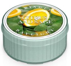 Kringle Candle Daylight - Świeczka Citrus and sage
