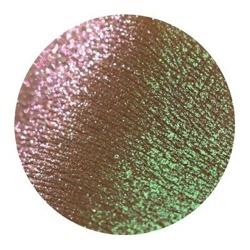 Tammy Tanuka Pigment do powiek 501 1ml