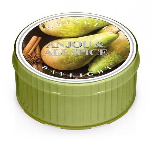 Kringle Candle daylight Świeczka zapachowa Anjou&Allspice 42g